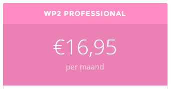 Onderhoudspakket-wordpress-WP2Professional